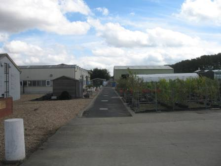 The extensive greenhouses at East Malling